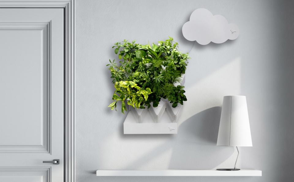 Plug-Plant-Smart-Garden_4