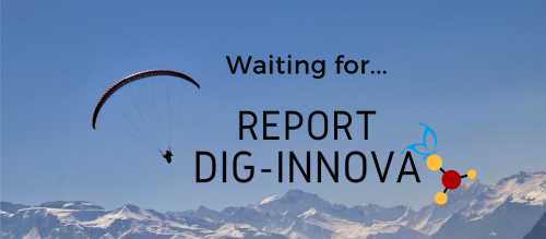 Waiting for… Dig-Innova Report